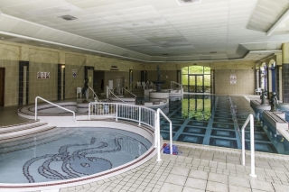 The Glenview Hotel Newtownmountkennedy indoor pool