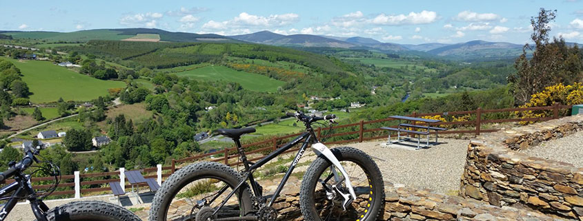 children's things to do in wicklow fatbikes